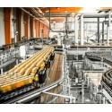 Industrie alimentara